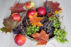 Ahornblätter, Nektarine, Trauben und andere Geschenke der Natur Lizenzfreies Stockbild