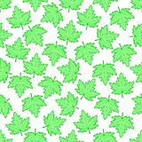 Ahornblattmuster stock abbildung