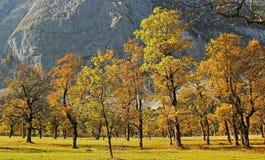 Ahornboden karwendel. Famous autumnal austrian landscape royalty free stock photos