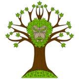 Ahornholz Greenman im Baum Lizenzfreie Stockfotografie