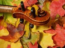 Ahornholz-Violinen-Rolle u. Herbst-Blätter Stockfoto