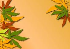 Ahornholzblathintergrund Vektor Abbildung