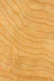 Ahornholzfurnierholz Stockfotos