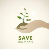 Ahorre el concepto de las plantas con la mano humana que sostiene la planta Imagen de archivo