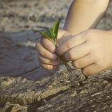 ¡Ahorre el mundo! Imagen de archivo libre de regalías