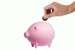 Ahorros del cerdo Imagen de archivo