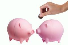 Ahorros del cerdo Fotografía de archivo libre de regalías