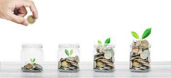 Ahorros del dinero y concepto de la inversión empresarial, botella de monedas en la madera blanca en el fondo blanco Foto de archivo