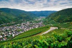 Ahr dal, Tyskland Arkivfoto