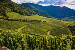 Ahr dolina, Niemcy Zdjęcia Stock