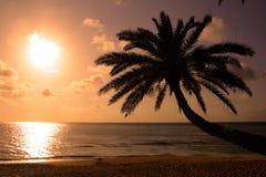 ahu海滩夏威夷o日落 库存图片