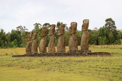 Ahu Akivi, η εθιμοτυπική πλατφόρμα που η ομάδα αγαλμάτων Moai που κοιτάζει έξω προς το Ειρηνικό Ωκεανό, νησί Πάσχας, Χιλή στοκ φωτογραφίες με δικαίωμα ελεύθερης χρήσης