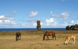Ahu Ko te Riku, Easter Island Royalty Free Stock Photos
