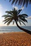 ahu plażowy Hawaii o zmierzch Obrazy Royalty Free