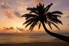 ahu plażowy Hawaii o zmierzch Zdjęcie Royalty Free
