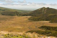 Ahukawakawa bagno w Egmont parku narodowym Zdjęcie Royalty Free