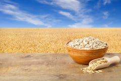 ai dostępny pucharu kartoteki oatmeal Zdjęcie Stock
