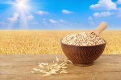 ai dostępny pucharu kartoteki oatmeal Obrazy Royalty Free