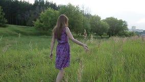 Ai fiori commoventi della ragazza di tramonto nel campo verde stock footage