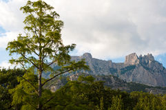 Ai-Petri bergliggande Royaltyfri Foto