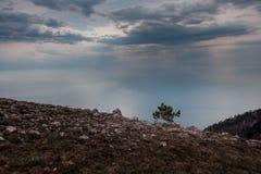 Ai-petri Krim landskap arkivbild