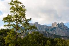 Ai-Petri mountain landscape. Mountain landscape in the Crimean Mountains. Ai-Petri royalty free stock photo