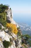On  AI-Petri plateau,  top view of  coast , Crimea. Stock Photo