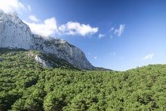 Ai-Petri rock under blue sky. The green hills around. Ukraine. C. Ukraine. The Crimea peninsula. Ai-Petri rock on background stock photos