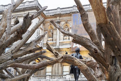 Ai Wei Wei's Tree at the Royal Academy of Arts Royalty Free Stock Image