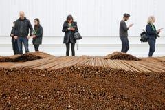 Ai Weiwei - прямо стоковое изображение