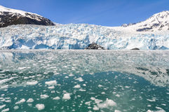 Aialik冰川, Kenai海湾国家公园(阿拉斯加) 库存照片