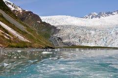 aialik Alaska fjords lodowa kenai np Fotografia Royalty Free