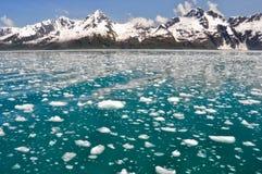 aialik Alaska podpalany fjords kenai np Zdjęcie Royalty Free
