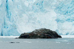 Aialik Glacier Ice Flow Pacific Ocean Alaska Coast Royalty Free Stock Images