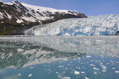 Aialik lodowiec, Kenai Fjords park narodowy (Alaska) Obrazy Royalty Free
