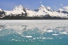 Aialik zatoka, Kenai Fjords park narodowy (Alaska) Zdjęcie Stock