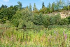 Aibachgrund猎物在Darmsheim,辛德尔芬根德国 免版税图库摄影