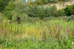 Aibachgrundsteengroeve in Darmsheim, Sindelfingen Duitsland stock fotografie