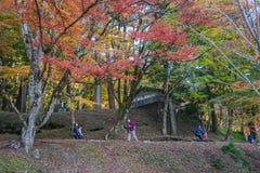 AICHI, - 23 DE NOVEMBRO: A multidão de povos na ponte vermelha com outono colorido folheia em Korankei, o 23 de novembro de 2016  Fotos de Stock Royalty Free