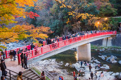 AICHI, - NOV 23: Crowd of people on red bridge with colorful Aut Royalty Free Stock Photos
