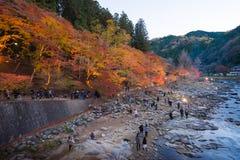 AICHI, - NOV 23: Piękny krajobraz w jesieni przy Korankei, na N Zdjęcia Royalty Free