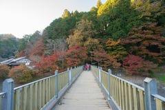AICHI, - NOV 23: Piękny krajobraz w jesieni przy Korankei, na N Fotografia Stock