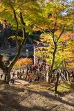 AICHI, - NOV 23: Tłum ludzie na czerwień moscie z kolorowym Au Fotografia Stock