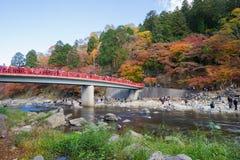 AICHI, - 23. NOVEMBER: Menge von Leuten auf roter Brücke mit buntem Au Lizenzfreie Stockbilder
