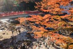 AICHI, - 23 NOVEMBRE : Foule des personnes sur le pont rouge avec de l'Au coloré Photo libre de droits