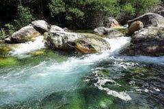 Aigà ¼ estortes国家公园在加泰罗尼亚的比利牛斯,西班牙 免版税库存照片