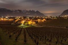 Aigle葡萄园,瑞士 免版税库存照片