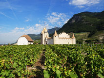 Aigle Castle, Switzerland. Aigle Castle (French: Chateau D'Aigle) is situated in the middle of vineyards in Canton Vaud in Siwtzerland Royalty Free Stock Photography