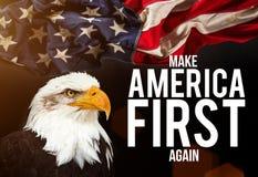 Aigle chauve avec l'indicateur américain Image libre de droits