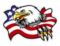 aigle chauve avec la mascotte déchirée de drapeau de l'Amérique peut employer pour le logo de sport illustration stock